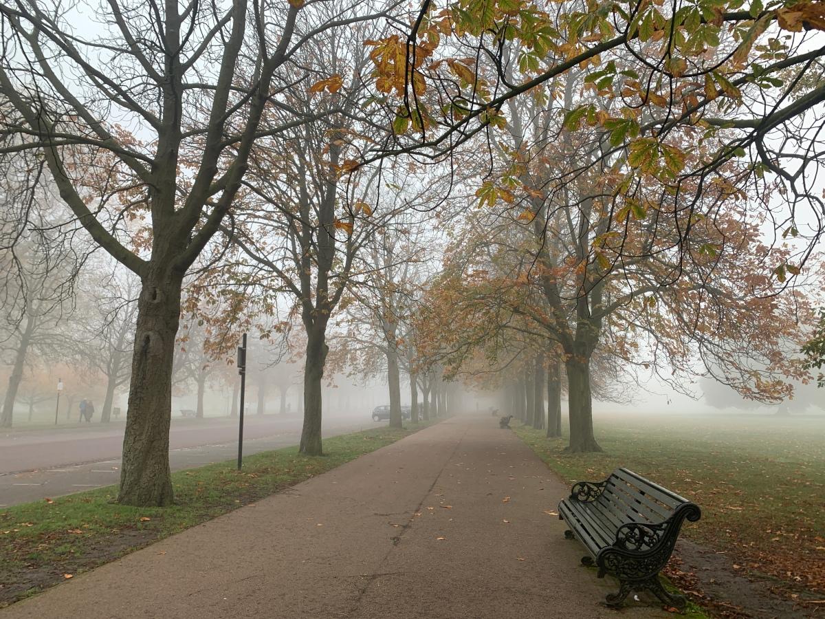 Greenwich Park, London. 5 November, 2020